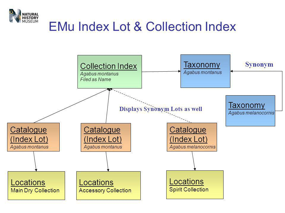 EMu Index Lot & Collection Index Taxonomy Agabus montanus Collection Index Agabus montanus Filed as Name Catalogue (Index Lot) Agabus montanus Taxonom