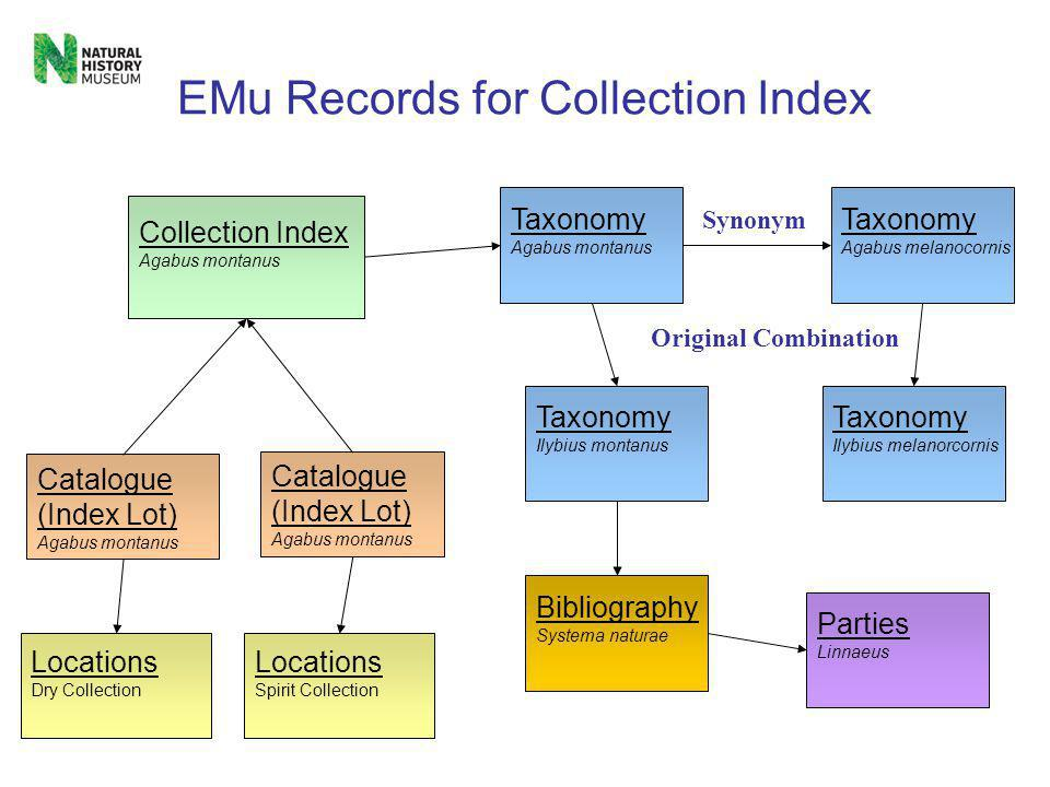 EMu Catalogue Our main record types in the Catalogue are; 1) Specimen – Specimen Level Datasets 2) Preparation – Specimen level Datasets 3) Acquisition – Accession Register 4) Index Lot - Collection Index Focus on the Index Lot record type and its relationship to another module named the Collection Index.