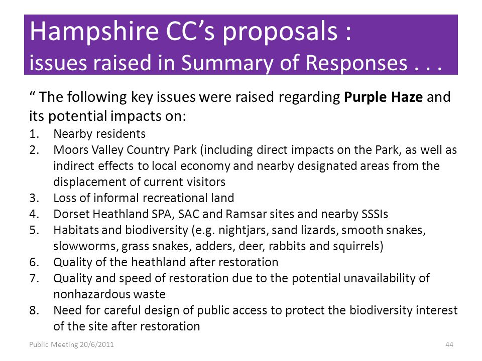 Public Meeting 20/6/201144 The following key issues were raised regarding Purple Haze and its potential impacts on: 1.Nearby residents 2.Moors Valley Country Park (including direct impacts on the Park, as well as indirect effects to local economy and nearby designated areas from the displacement of current visitors 3.Loss of informal recreational land 4.Dorset Heathland SPA, SAC and Ramsar sites and nearby SSSIs 5.Habitats and biodiversity (e.g.
