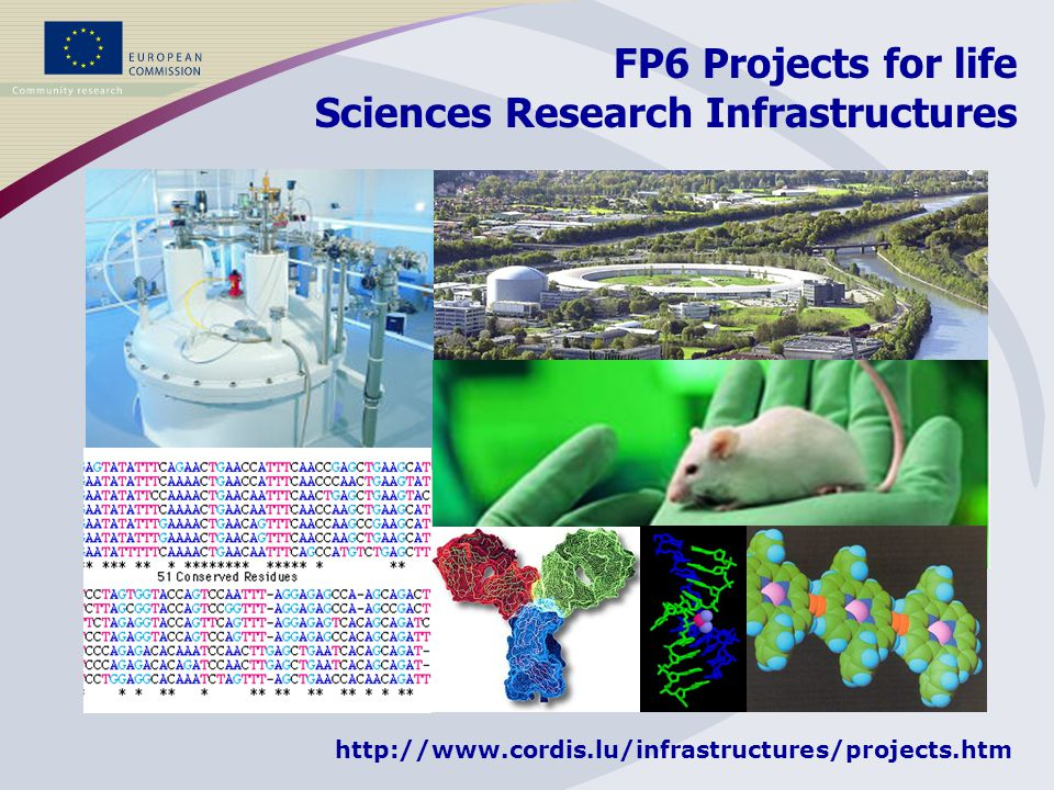18 projects 144 partners 62 MEuro FP6 Projects for life Sciences Research Infrastructures Several hundreds of thousands of users http://www.cordis.lu/infrastructures/projects.htm