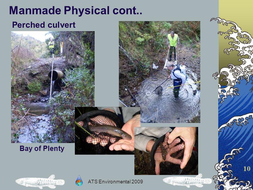 ATS Environmental 2009 10 Manmade Physical cont.. Perched culvert Bay of Plenty