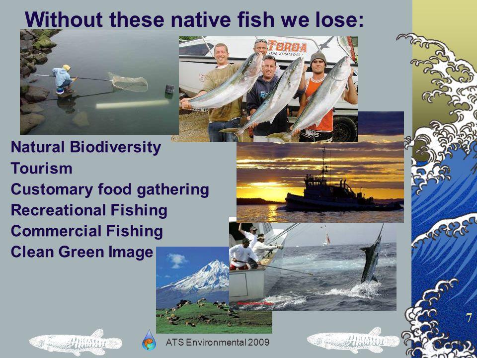 ATS Environmental 2009 8 Obstructions to fish passage fall into 3 main groups: 1.Manmade Physical - Engineered 2.Manmade Environmental – Water quality 3.Semi-natural – Pests