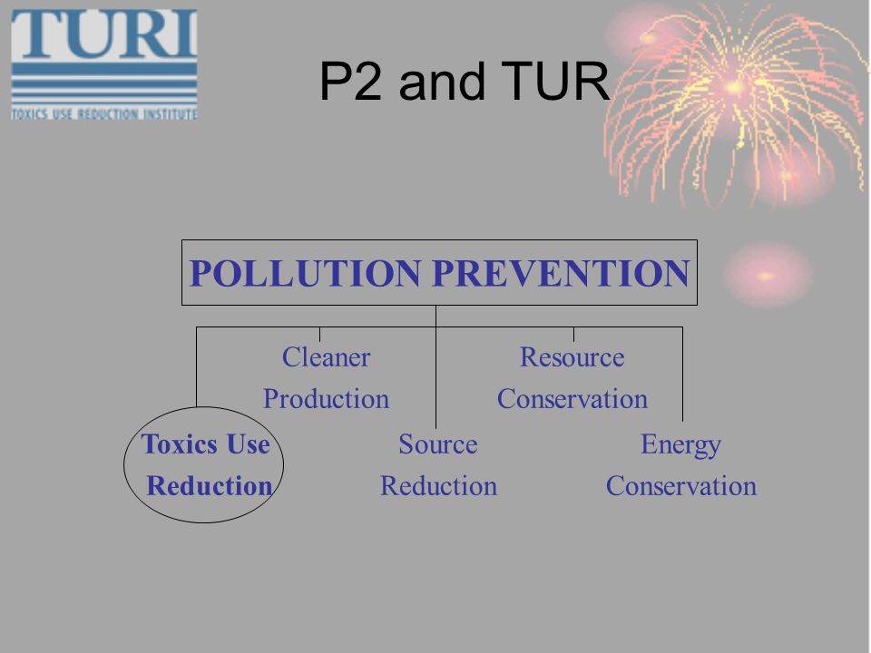 P2 and TUR POLLUTION PREVENTION Source Reduction Energy Conservation Resource Conservation Cleaner Production Toxics Use Reduction