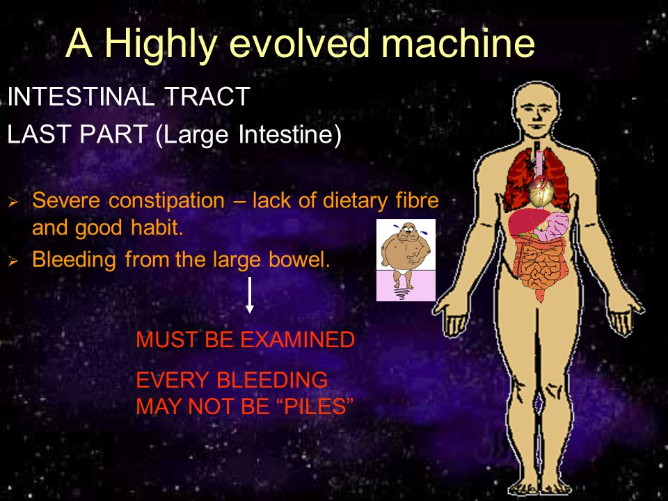 A Highly evolved machine INTESTINAL TRACT LAST PART (Large Intestine) Severe constipation – lack of dietary fibre and good habit. Bleeding from the la