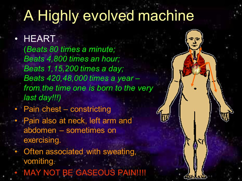 A Highly evolved machine HEART (Beats 80 times a minute; Beats 4,800 times an hour; Beats 1,15,200 times a day; Beats 420,48,000 times a year – from t