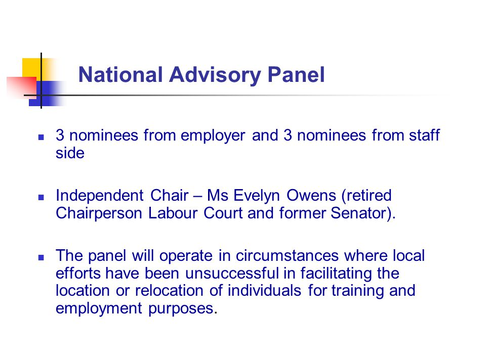 National Advisory Panel 3 nominees from employer and 3 nominees from staff side Independent Chair – Ms Evelyn Owens (retired Chairperson Labour Court