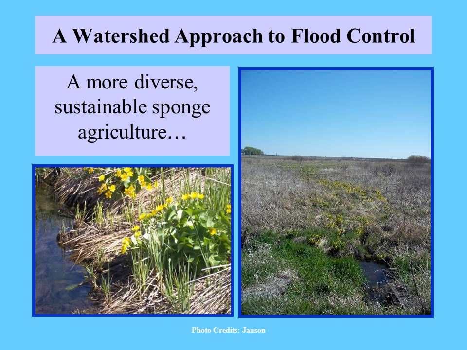 A Watershed Approach to Flood Control A more diverse, sustainable sponge agriculture … Photo Credits: Janson