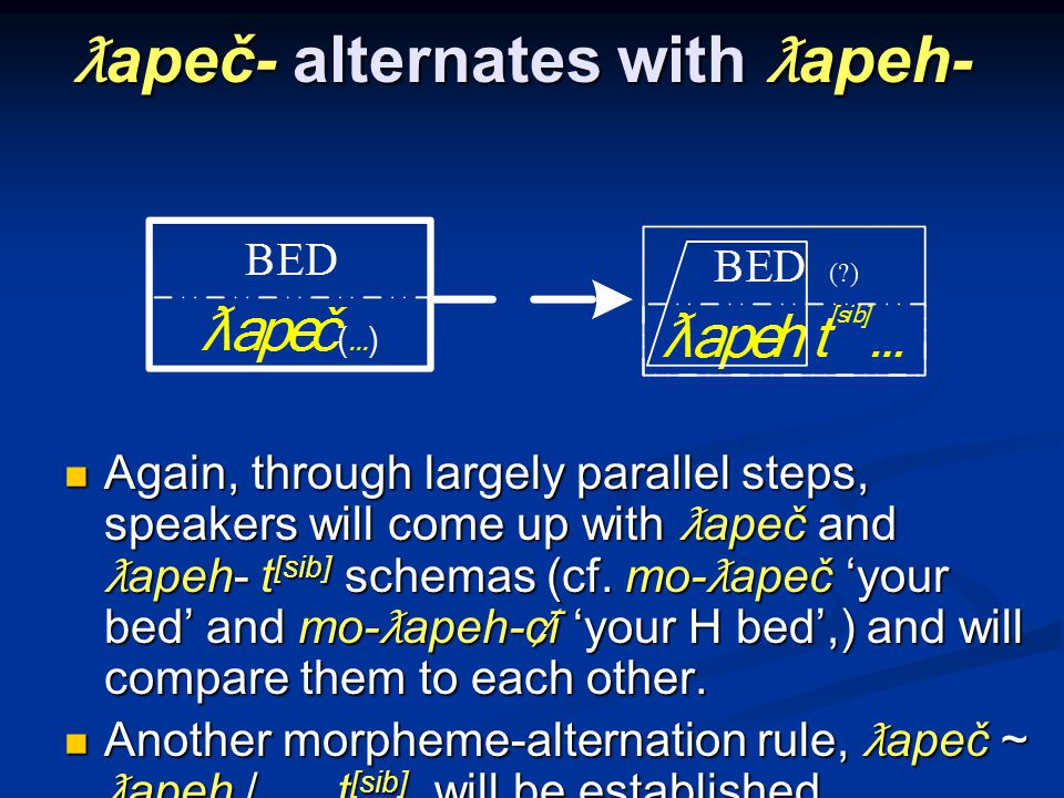 ƛ apeč- alternates with ƛ apeh- Again, through largely parallel steps, speakers will come up with ƛ apeč and ƛ apeh- t [sib] schemas (cf.