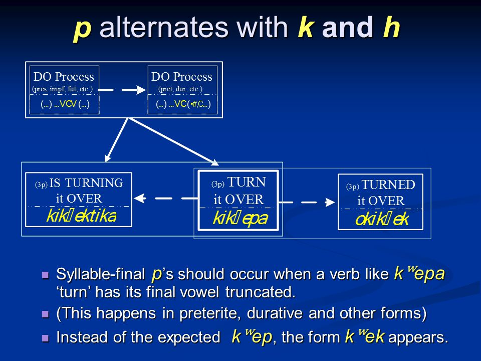 p alternates with k and h Syllable-final p s should occur when a verb like k ʷ epa turn has its final vowel truncated.