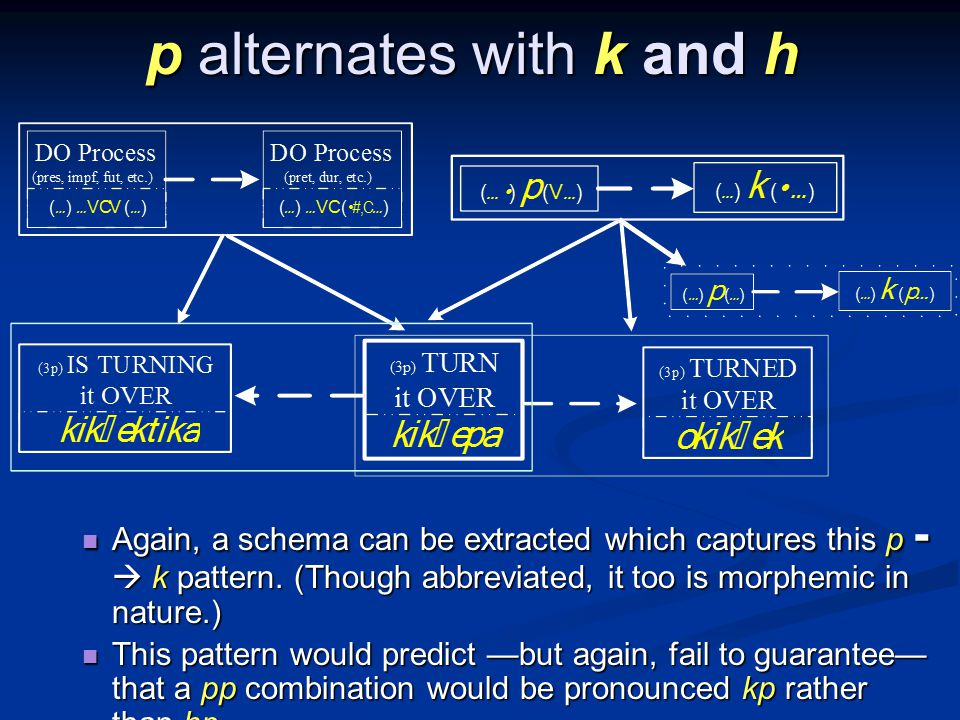p alternates with k and h Again, a schema can be extracted which captures this p - k pattern.