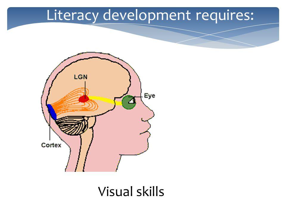 Literacy development requires: Visual skills