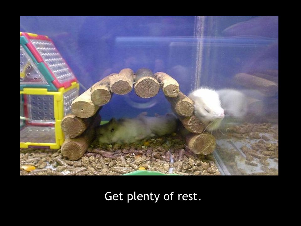 Get plenty of rest.