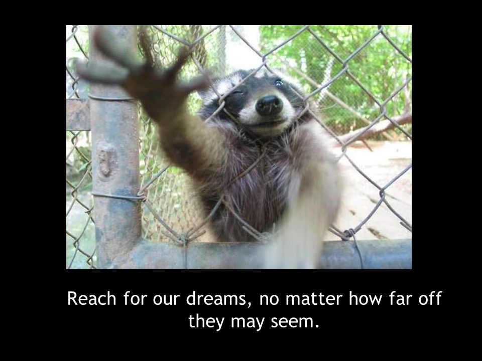 Reach for our dreams, no matter how far off they may seem.