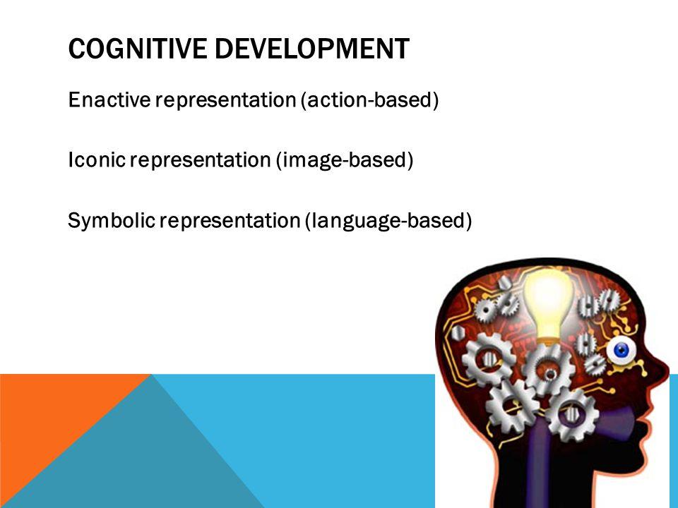 COGNITIVE DEVELOPMENT Enactive representation (action-based) Iconic representation (image-based) Symbolic representation (language-based)