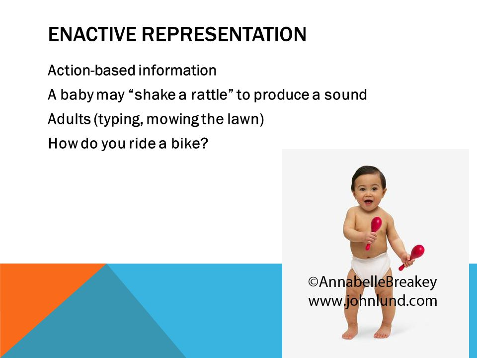 ENACTIVE REPRESENTATION Action-based information A baby may shake a rattle to produce a sound Adults (typing, mowing the lawn) How do you ride a bike?