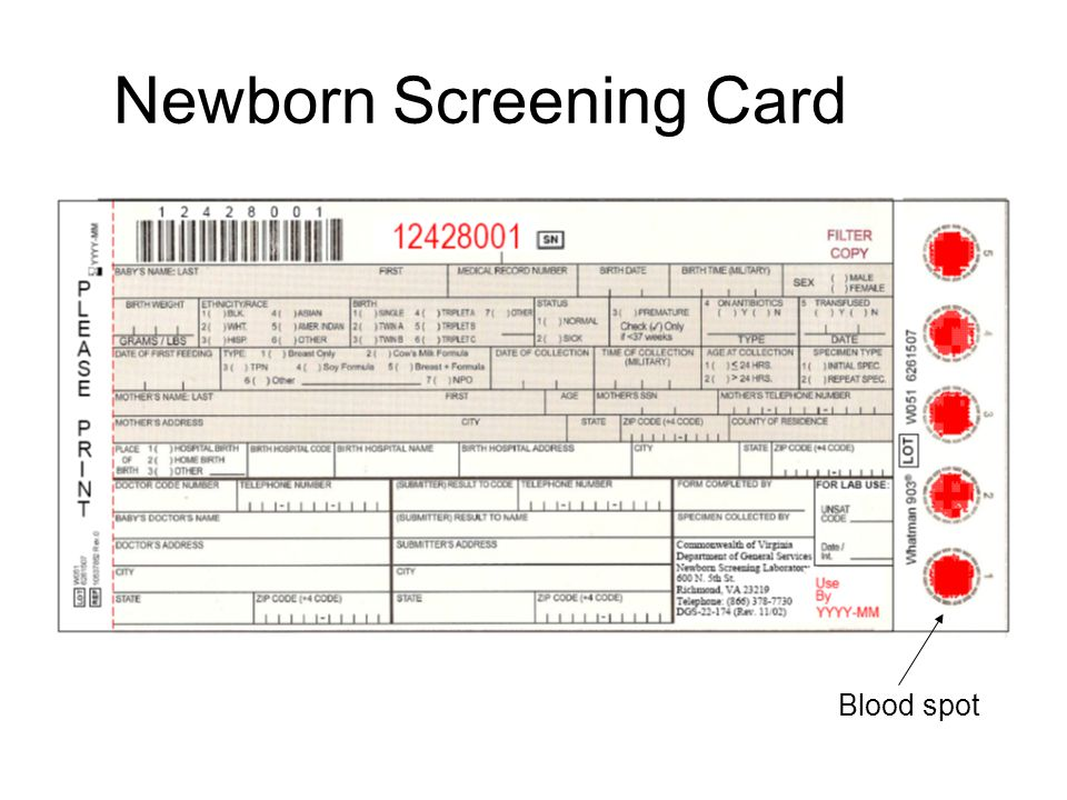 Newborn Screening Card Blood spot