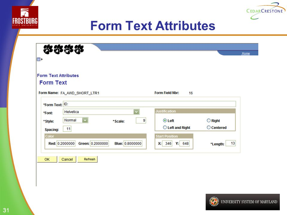 31 Form Text Attributes