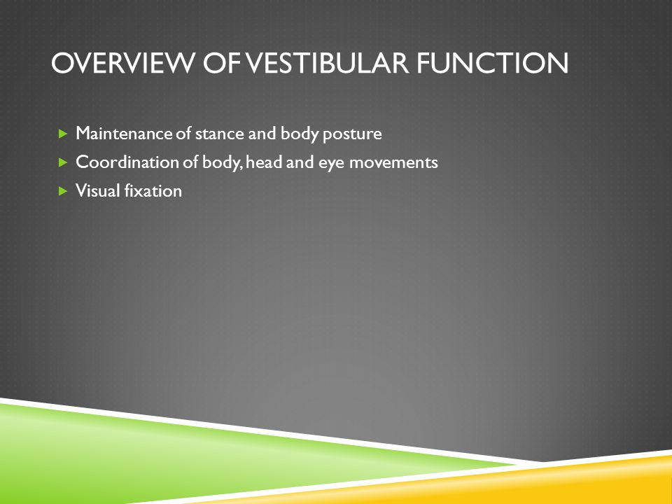 OVERVIEW OF VESTIBULAR FUNCTION Maintenance of stance and body posture Coordination of body, head and eye movements Visual fixation