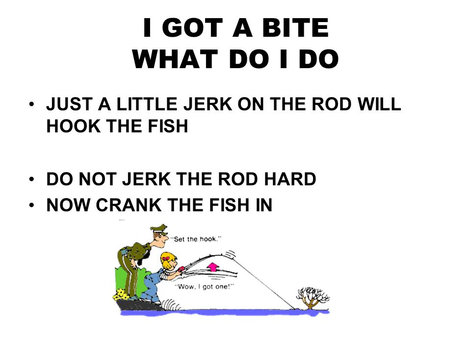 CASTING YOUR ROD HOLD THE ROD OVER YOUR SHOULDER LOOK BEHIND YOU TO SEE THE HOOKS ARE CLEAR---- NOT TO HOOK SOMEONE GO FORWARD WITH A SMOOTH THROW TURN THE HANDLE OF THE REEL NOW WAIT FOR A BITE