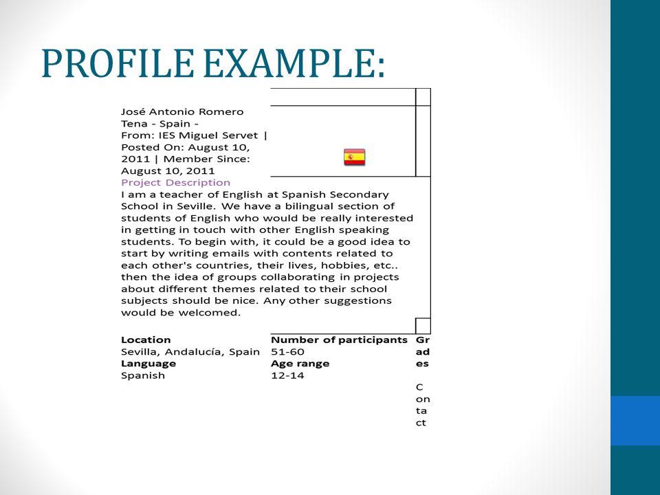 PROFILE EXAMPLE: