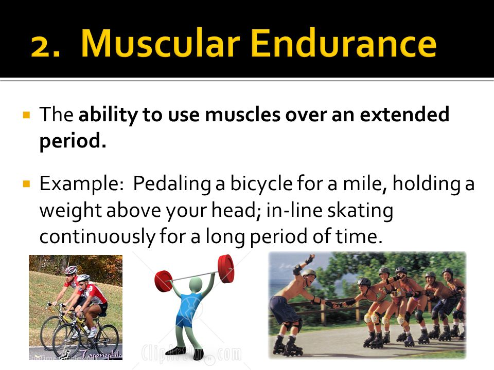 The ability to use muscles over an extended period.
