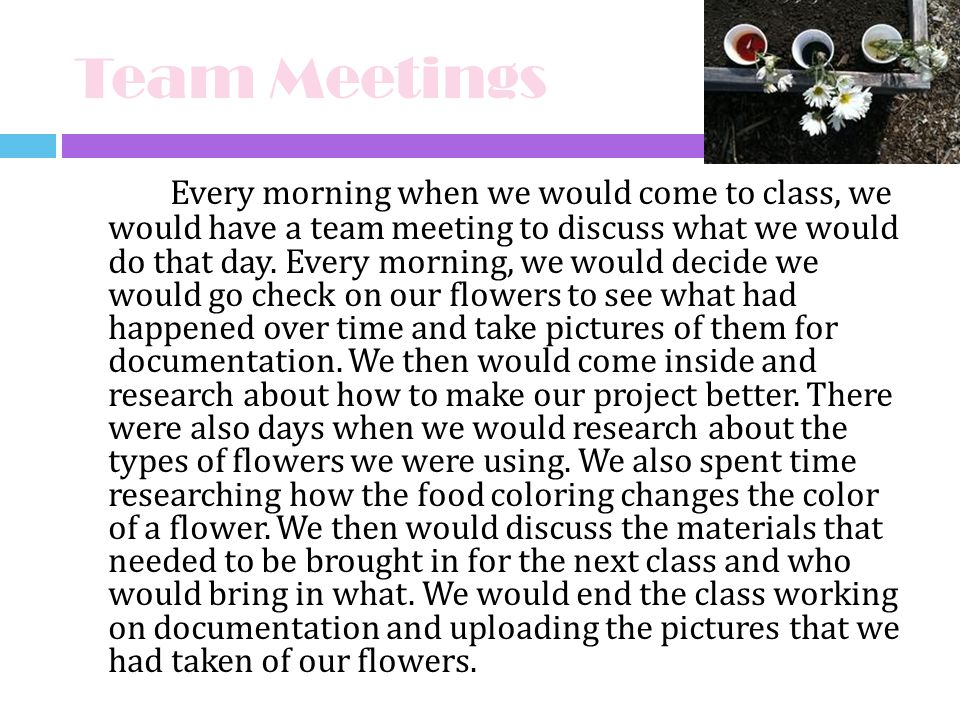 Team Meetings Every morning when we would come to class, we would have a team meeting to discuss what we would do that day. Every morning, we would de