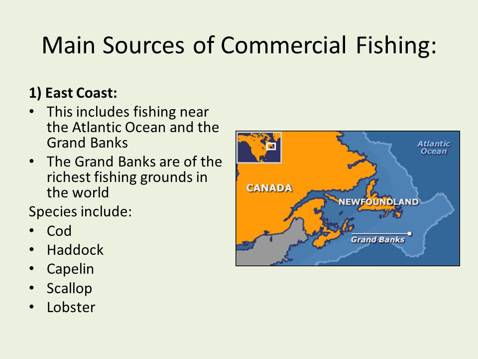 Main Sources of Commercial Fishing: 1) East Coast: This includes fishing near the Atlantic Ocean and the Grand Banks The Grand Banks are of the riches
