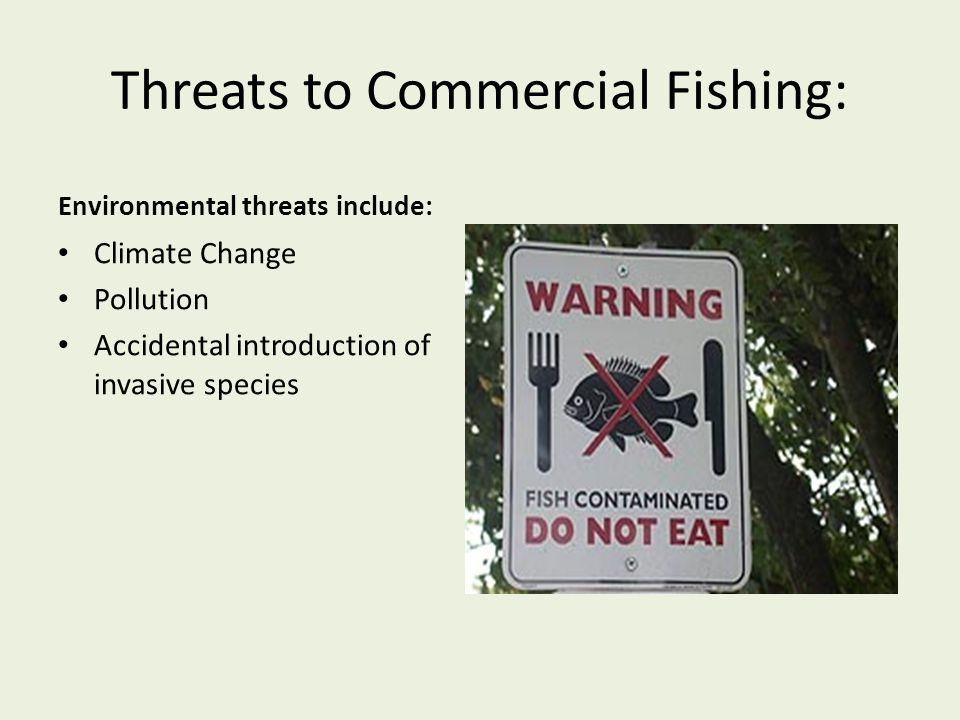Threats to Commercial Fishing: Environmental threats include: Climate Change Pollution Accidental introduction of invasive species