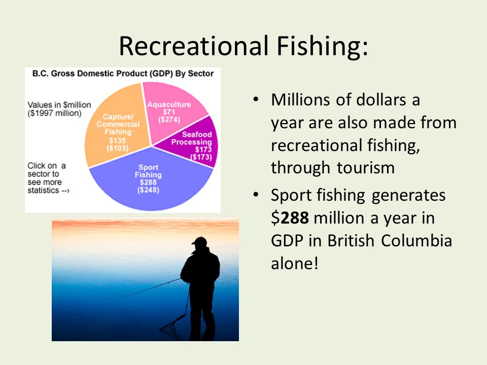 Recreational Fishing: Millions of dollars a year are also made from recreational fishing, through tourism Sport fishing generates $288 million a year