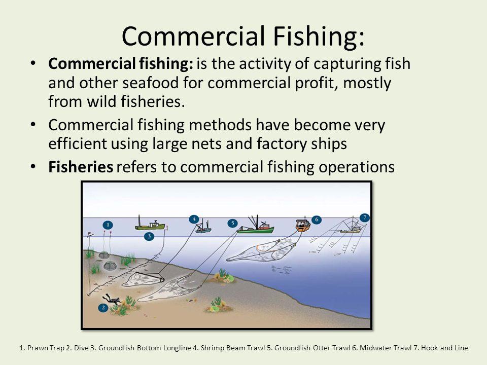 Commercial Fishing: 8.Salmon Purse Seine 9. Midwater Salmon Gillnet 10.