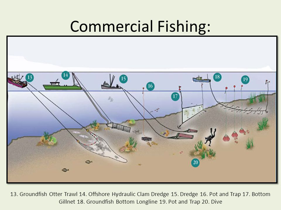 Commercial Fishing: 13. Groundfish Otter Trawl 14. Offshore Hydraulic Clam Dredge 15. Dredge 16. Pot and Trap 17. Bottom Gillnet 18. Groundfish Bottom