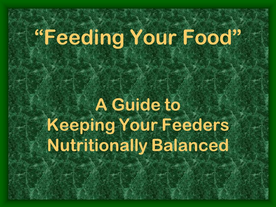 Feeding Your Food A Guide to Keeping Your Feeders Nutritionally Balanced