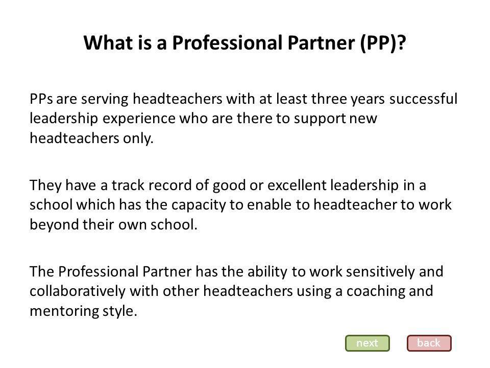 What is a Professional Partner (PP).