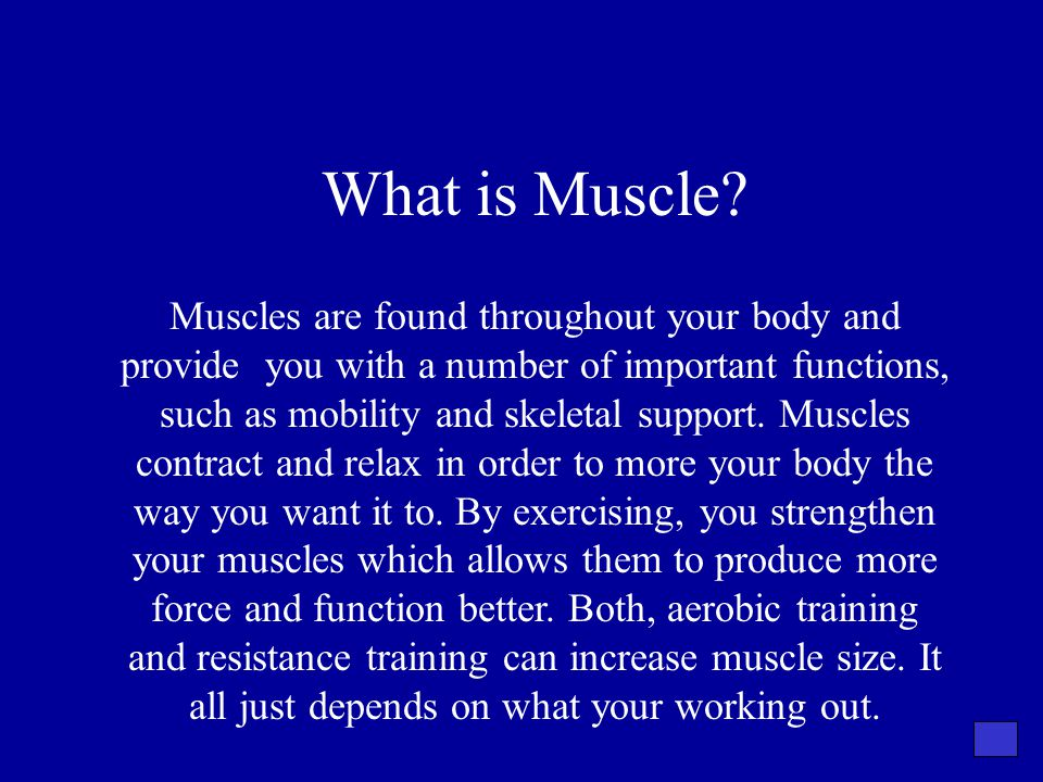 What is Muscle? Muscles are found throughout your body and provide you with a number of important functions, such as mobility and skeletal support. Mu