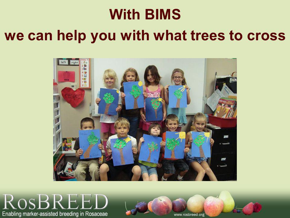 With BIMS we can help you with what trees to cross