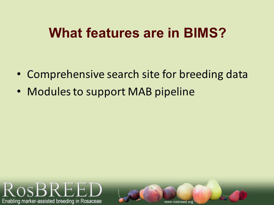 What features are in BIMS.