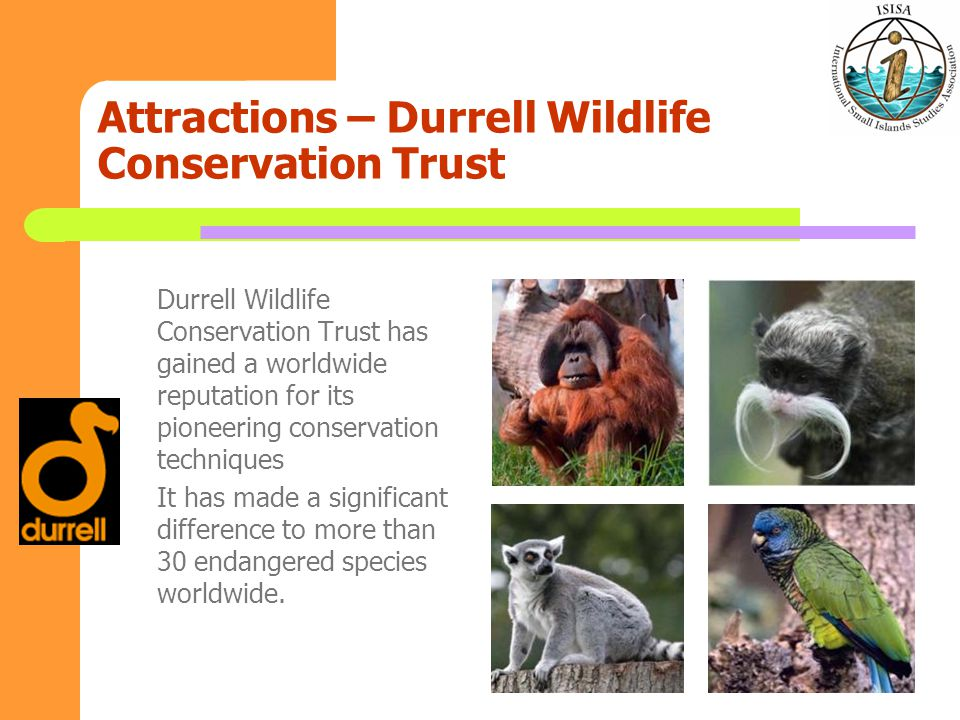 Attractions – Durrell Wildlife Conservation Trust Durrell Wildlife Conservation Trust has gained a worldwide reputation for its pioneering conservation techniques It has made a significant difference to more than 30 endangered species worldwide.