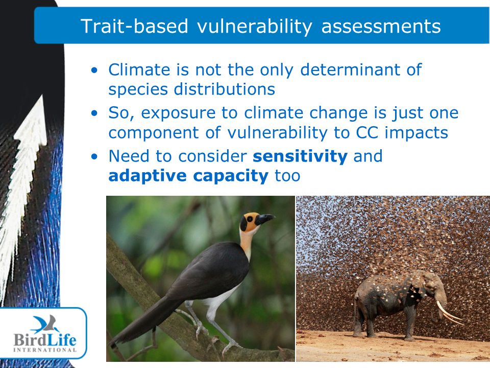 Trait-based vulnerability assessments Climate is not the only determinant of species distributions So, exposure to climate change is just one component of vulnerability to CC impacts Need to consider sensitivity and adaptive capacity too