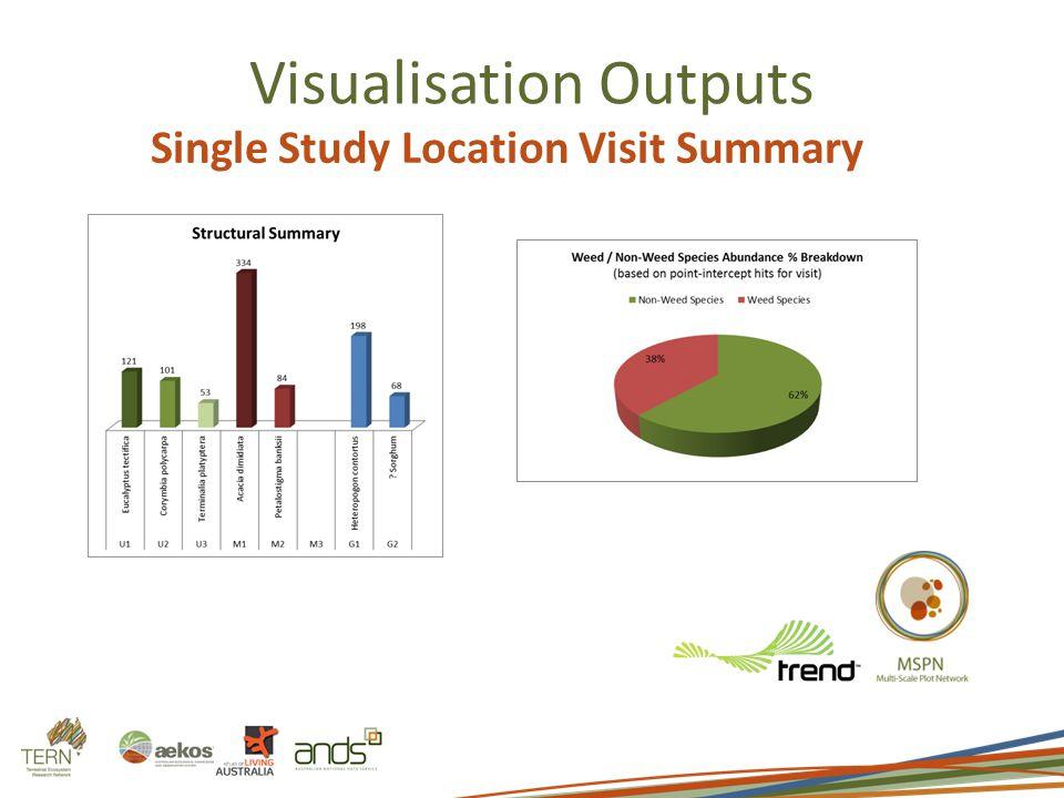 Visualisation Outputs Single Study Location Visit Summary