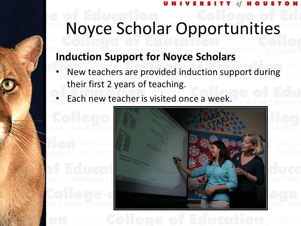 Noyce Scholar Opportunities Induction Support for Noyce Scholars New teachers are provided induction support during their first 2 years of teaching.
