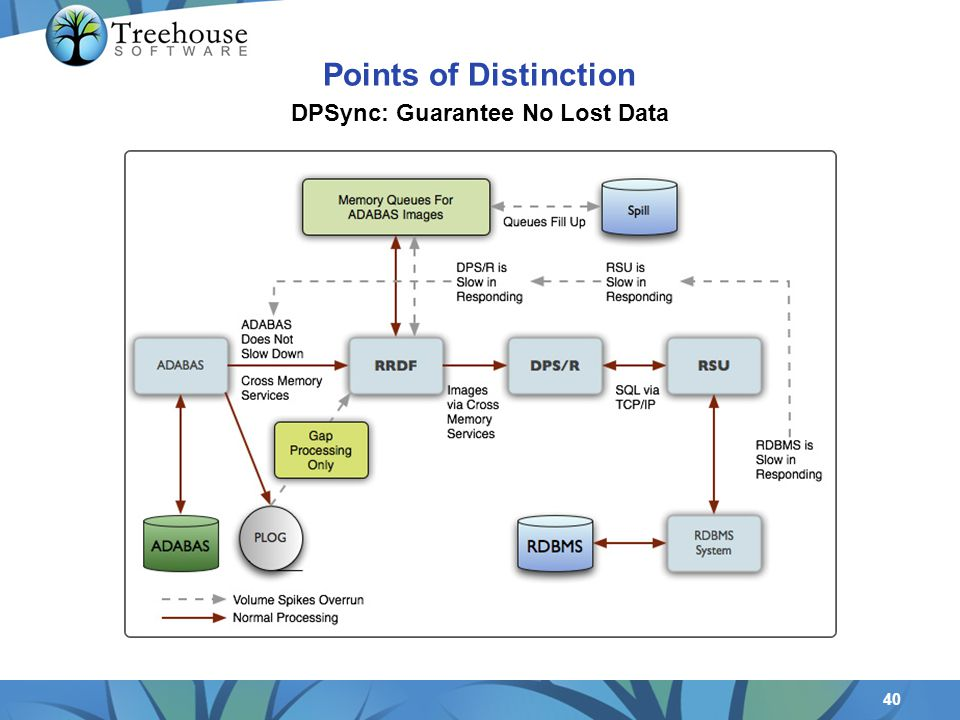 40 DPSync: Guarantee No Lost Data Points of Distinction