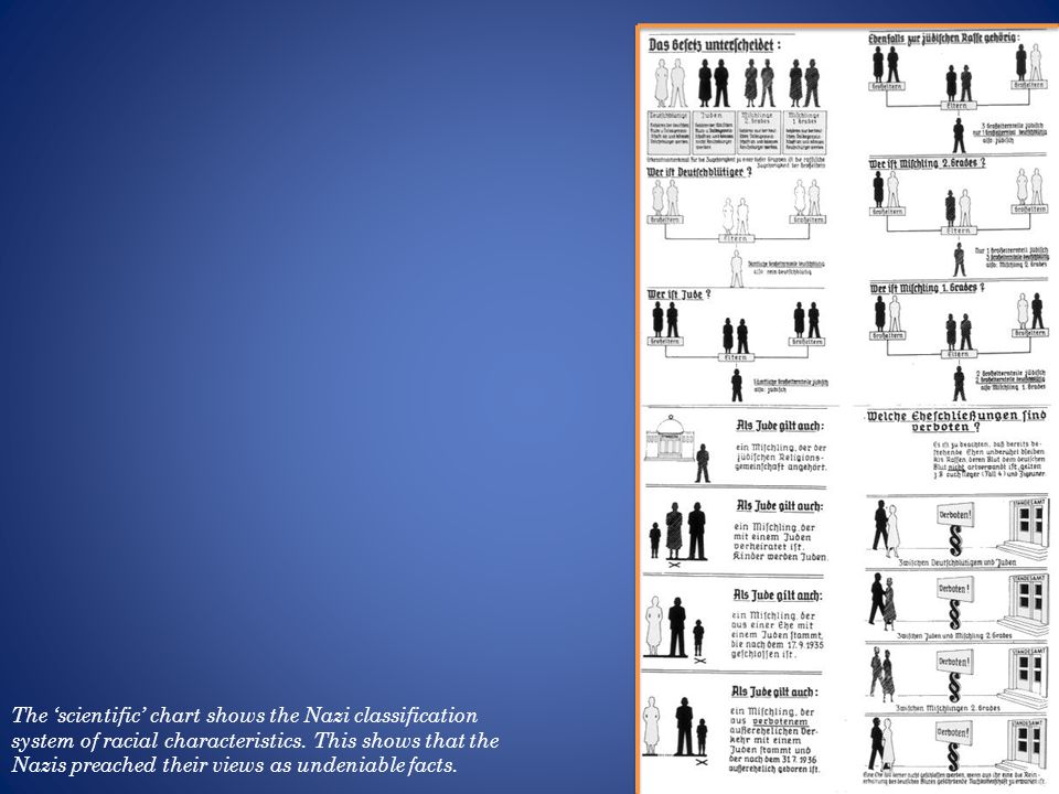 The scientific chart shows the Nazi classification system of racial characteristics.
