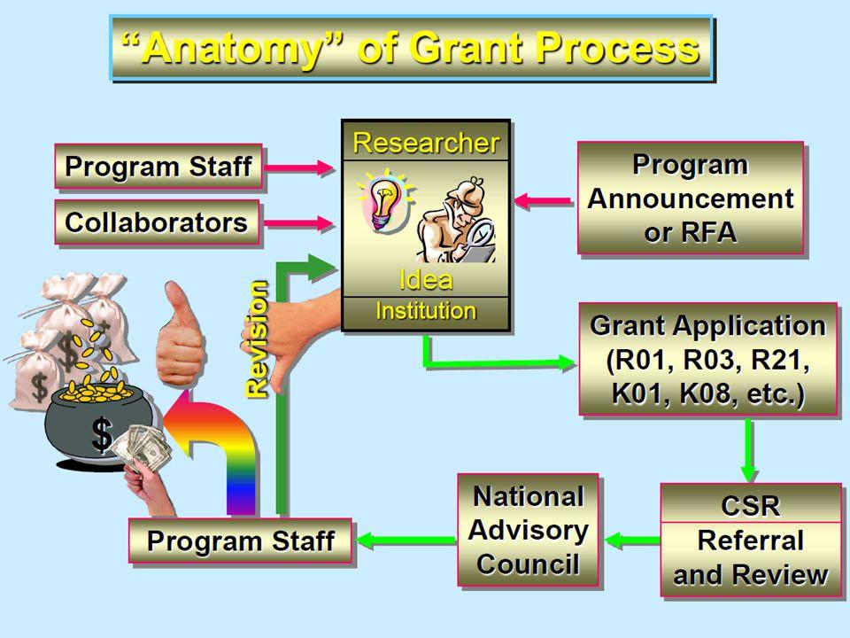 Scientific merit Program considerations Availability of funds