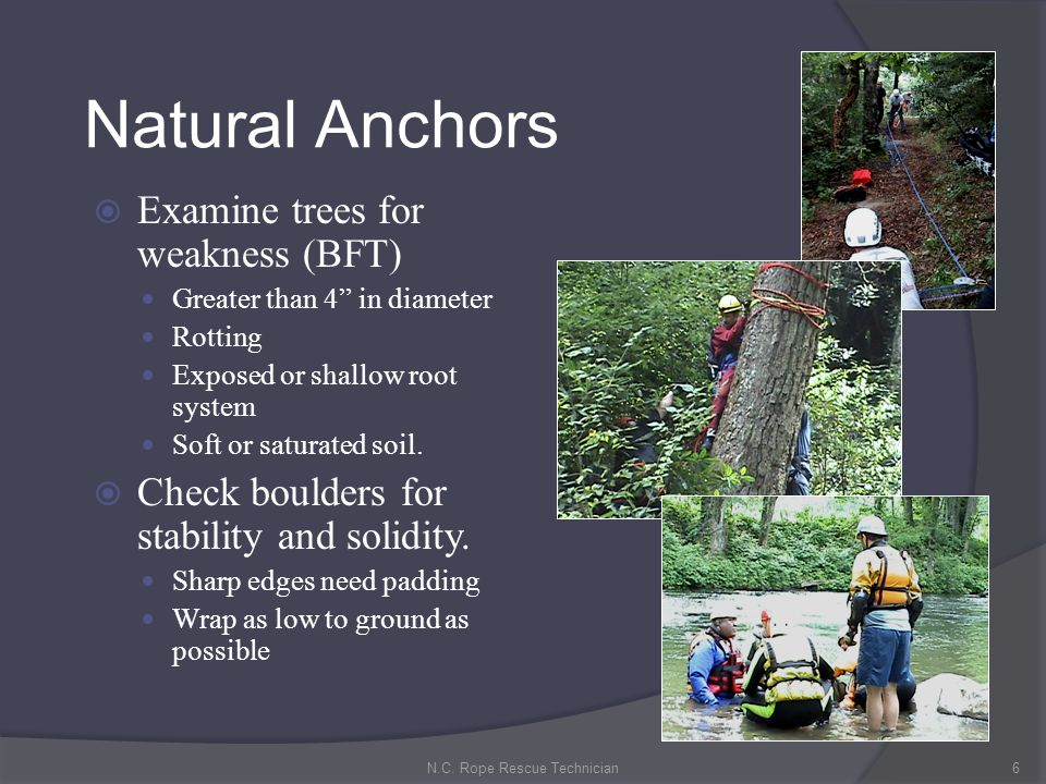 Structural Anchors: Select: Anchors that are inherently part of the structure or specifically designed to support rescue loads.