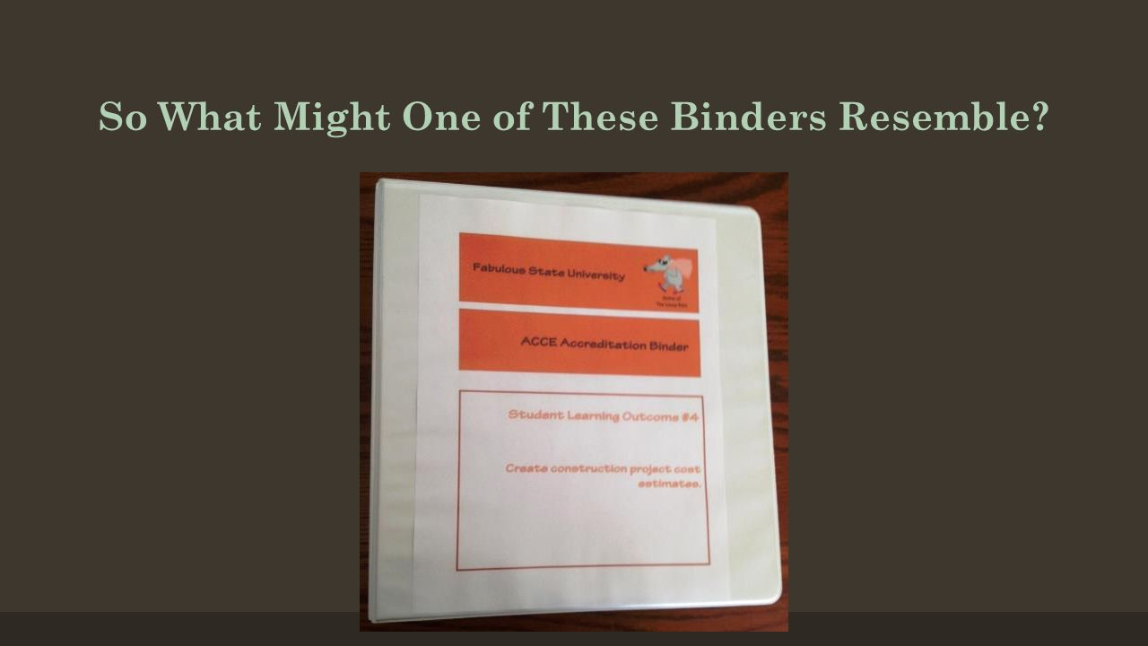 So What Might One of These Binders Resemble?