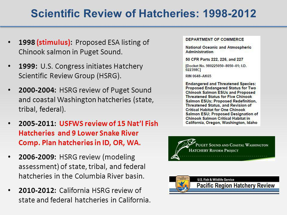 Scientific Review of Hatcheries: (stimulus): Proposed ESA listing of Chinook salmon in Puget Sound.