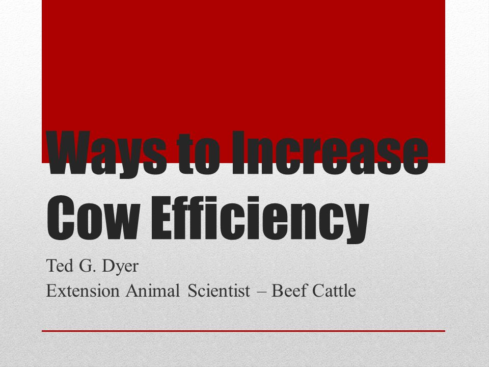 Ways to Increase Cow Efficiency Ted G. Dyer Extension Animal Scientist – Beef Cattle