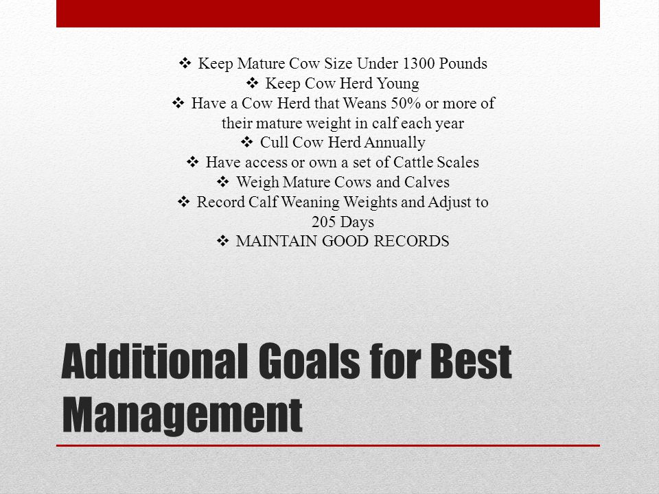 Additional Goals for Best Management Keep Mature Cow Size Under 1300 Pounds Keep Cow Herd Young Have a Cow Herd that Weans 50% or more of their mature