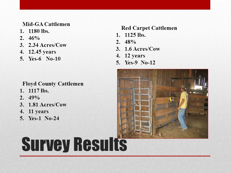 Survey Results Mid-GA Cattlemen 1.1180 lbs.