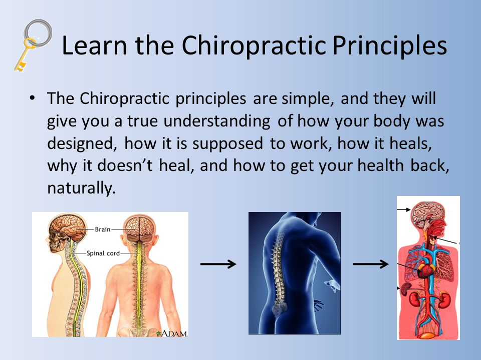 Learn the Chiropractic Principles The Chiropractic principles are simple, and they will give you a true understanding of how your body was designed, how it is supposed to work, how it heals, why it doesnt heal, and how to get your health back, naturally.